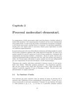 "Capitolo 2, ""Processi molecolari elementari"""