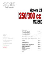2015 - Motore 2T 250-300cc EV v1.1