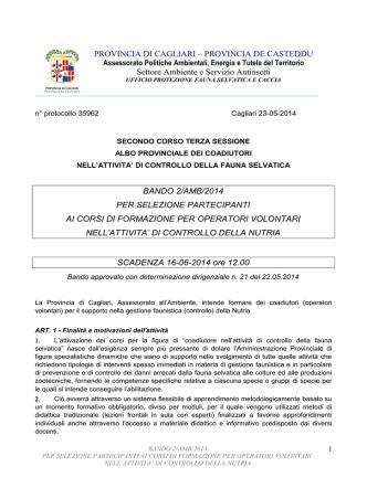 bando in formato pdf - Provincia di Cagliari