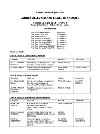 Commissione esami di laurea ISA, SA, ASA 18 luglio 2014