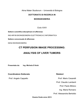 CT perfusion image processing: analysis of liver tumors