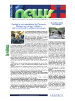 Newsletter n. 41/2014