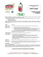 CAR FLASH - Industria Chimica General