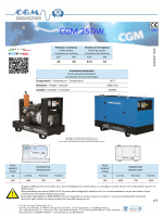 CGM 25DW - CGM Gruppi Elettrogeni