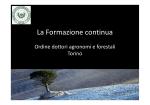2014 Relazione Consigliere Franchi