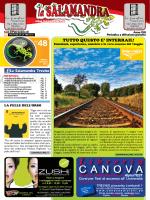 CANOVA Libreria - La Salamandra