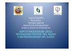 pdf (it, 908 KB, 11/25/13) - Università degli Studi di Verona