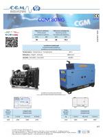 CGM 80NG - CGM Gruppi Elettrogeni