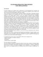 Manuale operazioni di volo, versione 1.0