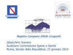 Audizione dottor Gioacchino Scarano, responsabile del Registro
