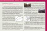 O. Cerasuolo – L. Pulcinelli, Rofalco, un castellum