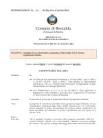 R.G. n. 61 - 13 - det. liq. Colibrì Cover System