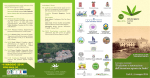 programma dettagliato (PDF 791Kb) - Ufficio Scolastico Regionale