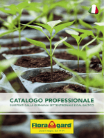 CATALOGO PROFESSIONALE