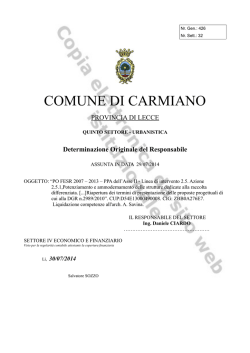 File: Documento allegato
