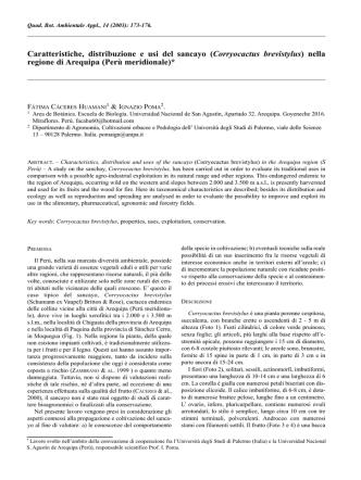 Caratteristiche, distribuzione e usi del sancayo