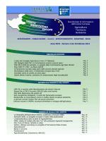 pdf (0,85 Mb)