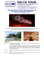FUOCHI AL CAVALLINO_Notturna 23.08.14