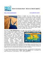 Shark e Jolanda Reef