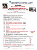 Locandina Torrentismo_2015