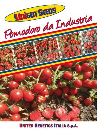 Clicca qui per scaricare il catalogo pomodoro da