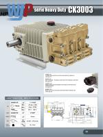 CK3003 - Bertolini Pumps