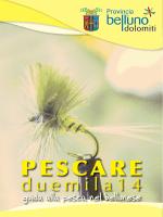 PESCARE - Provincia di Belluno
