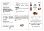 Programma Salemi 2014