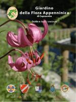 Guida Giardino 2014 - Giardino della flora Appenninica di Capracotta