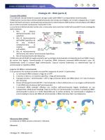 Citologia 19 - RNA (parte 2)