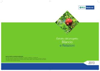 Bilancio economico 2013