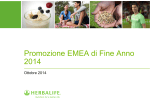 EMEA 2014 Year End Promotion