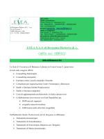 ESEA elenco - Olbeg Trainers