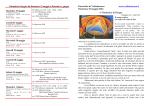 Calendario Liturgico da Domenica 25 maggio a Domenica 1 giugno