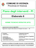 Norme tecniche operative P.I. in formato Documento PDF