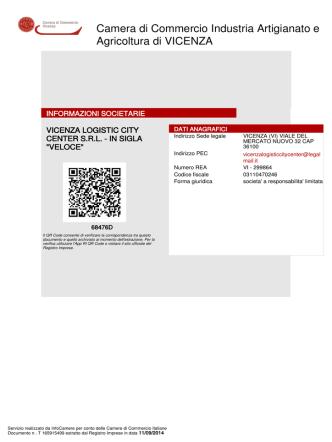 Bilancio Veloce 2013 in formato Documento PDF