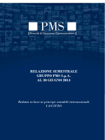 RELAZIONE SEMESTRALE GRUPPO PMS SpA AL 30 GIUGNO 2014