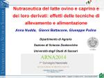 Presentazione PDF