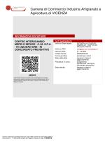 Bilancio CIS 2013 (in liquidazione) in formato Documento PDF