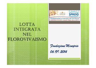 (Microsoft PowerPoint - Lazzarin2 [modalit\340 compatibilit\340])