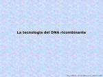 Lezione 15-accenni DNA ricombinante-1