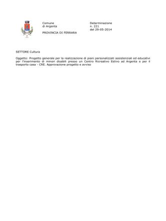 Comune Determinazione di Argenta n. 221 del 29-05