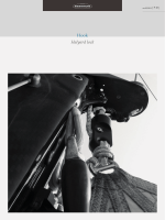 Hook Halyard lock