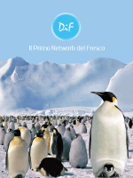 Download - DIF Distribuzione Italiana Freschi