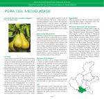 PERA DEL MEDIO ADIGE - Veneto Agricoltura