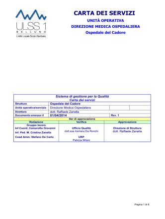 Carta dei Servizi application | PDF
