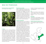 BISI DE PESEGGIA - Veneto Agricoltura