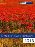 Bilancio Sociale e di Missione 2013