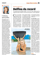 Delfina da record - Flippers Team