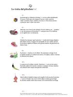 Download pdf - Lehrmittelverlag Zürich